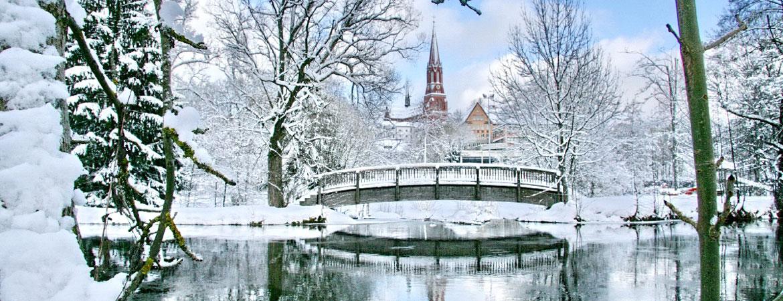 Stadtpark1_Marita-Haller.jpg